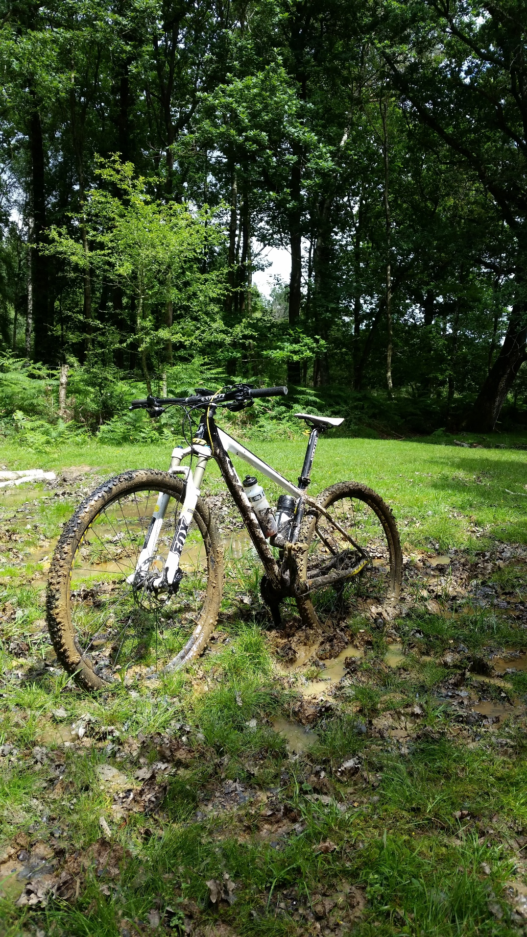 Stuck in the Mud MTB